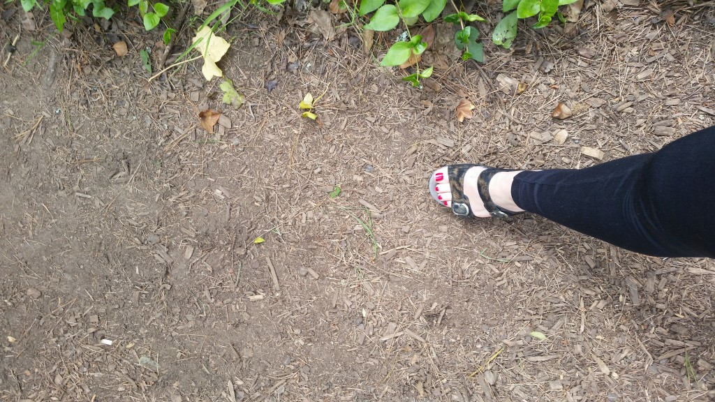 Love my Dansko - but these shoes weren't made for hiking